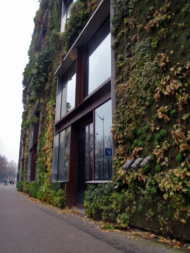 The vertical garden at Musee du quai Branly, Paris